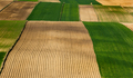 Colorful Farmfields in Coutryside. Farmland and Fields at Rolling Hills - PhotoDune Item for Sale