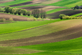 Rolling Green Hills. Beautiful Farmland and Coutryside at Spring in Poland - PhotoDune Item for Sale
