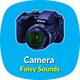 Camera Foley Sounds