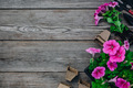 Garden Tools and Flower pots with Pink Petunia Flowers. Set for Gardening. - PhotoDune Item for Sale