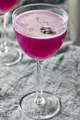 Boozy Purple Butterfly Pea Flower Gin Cocktail - PhotoDune Item for Sale