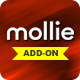 Mollie Payment Gateway for Fundme - CodeCanyon Item for Sale