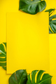Tropical leaves Monstera on yellow background. Flat lay - PhotoDune Item for Sale