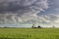 raining sunny day ober Dutch farmland - PhotoDune Item for Sale
