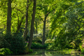 Pond, trees and green grass in a public park - PhotoDune Item for Sale