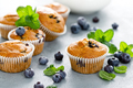 Blueberry banana muffins with fresh berries - PhotoDune Item for Sale
