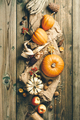 Autumn background. Thanksgiving, harvest, halloween concept flat lay top view - PhotoDune Item for Sale