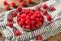 Raw Organic Red Raspberries - PhotoDune Item for Sale