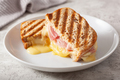 grilled ham and cheese sandwich - PhotoDune Item for Sale