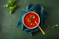 tomato and bell pepper vegetarian soup on green background - PhotoDune Item for Sale