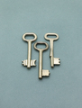 Several old metal keys on green background - PhotoDune Item for Sale