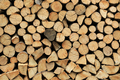 Firewood pile stacked chopped wood trunks - PhotoDune Item for Sale