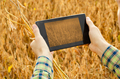 Farmer using tablet computer for inspecting soy at field - PhotoDune Item for Sale
