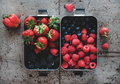 Flat-lay of fresh berries in lunchboxes over rough grey background - PhotoDune Item for Sale