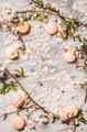 Sweet macaron cookies and white spring blossom flowers, copy space - PhotoDune Item for Sale