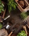 Spring garden works concept - PhotoDune Item for Sale