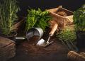 Gardening hobby concept - PhotoDune Item for Sale