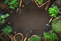 Gardening tools and herbs - PhotoDune Item for Sale