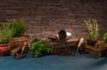 Still life of spring hobby garden - PhotoDune Item for Sale