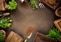 Spring hobby garden works concept - PhotoDune Item for Sale