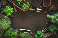 Composition with plants and gardening tools - PhotoDune Item for Sale
