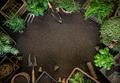 Hobby garden concept - PhotoDune Item for Sale