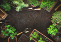 Gardening background with garden tolls - PhotoDune Item for Sale