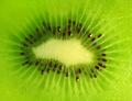 Close-up natural kiwi background - PhotoDune Item for Sale