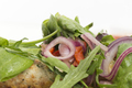 Fragment of dish chicken kebab and a salad. This image may be used as a background. Close-up. - PhotoDune Item for Sale