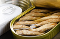 Canned smoked fish sprats in just opened tin can. Non-perishable food - PhotoDune Item for Sale