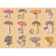 Collection of Stickers - GraphicRiver Item for Sale