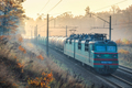 Moving freight train in beautiful forest in fog at sunrise - PhotoDune Item for Sale