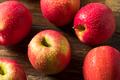 Raw Organic Red Fuji Apples - PhotoDune Item for Sale