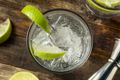 Refreshing Boozy Gin and Tonic - PhotoDune Item for Sale