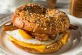 Homemade Fried Egg Bagel Sandwich - PhotoDune Item for Sale