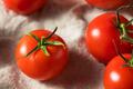 Raw Organic Vine Ripe Red Tomatoes - PhotoDune Item for Sale