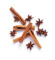anise star and cinnamon stick - PhotoDune Item for Sale