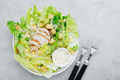 Traditional Caesar salad with chicken, romaine lettuce, croutons and parmesan cheese. - PhotoDune Item for Sale