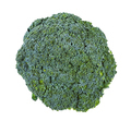 top view of fresh green Broccoli isolated on white - PhotoDune Item for Sale