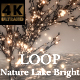 Nature Lake Bright - VideoHive Item for Sale