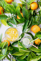 Homemade citrus infused water - PhotoDune Item for Sale
