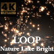 Nature Lake Dark - VideoHive Item for Sale