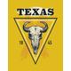 Texas Buffalo Tee Print Graphic - GraphicRiver Item for Sale