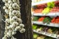 Bundle garlic hung on hang - PhotoDune Item for Sale