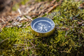 Traveller compass on the grass in the forest - PhotoDune Item for Sale