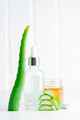 Cosmetic homemade lotion or essential oil from natural sliced aloe vera plant in glass bottles - PhotoDune Item for Sale