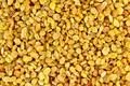 Raisins yellow texture - PhotoDune Item for Sale