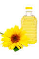 Vegetable oil with a flower sunflower - PhotoDune Item for Sale