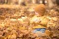 Happy child having fun outdoor in autumn park - PhotoDune Item for Sale