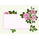 Pink roses card on the light green - GraphicRiver Item for Sale